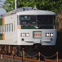 """快速""""足利藤まつり"""",185系で運転"""