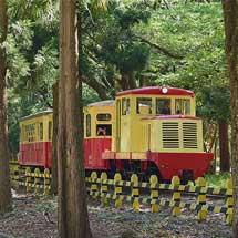 「こどもの日」にあわせて「なかよし鉄道」で増結増発運転