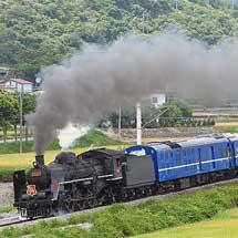 台湾鉄路管理局で「仲夏寶島號」運転