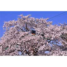 「第9回タムロン鉄道風景コンテスト」開催