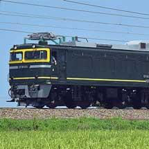 EF81 113がトワイライト色のまま全検出場