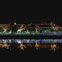 天理市田井庄池公園の保存車両に電飾