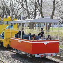 小坂鉄道レールパークで『明治百年通りお花見観光トロッコ運行』
