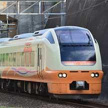 『舞浜ドリーム号』,E653系1000番台で運転