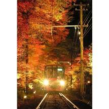 11月3日〜26日叡電,『第15回「京の奥座敷・貴船もみじ灯篭」 』ライトアップ実施