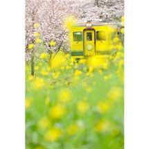 11月11日〜19日写真展「鉄道でめぐる四季」開催
