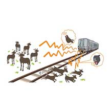 鉄道総研,鹿と犬の鳴き声を利用した鹿の車両接触事故防止手法を開発
